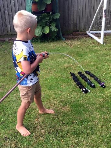 grass caterpillar watering hose